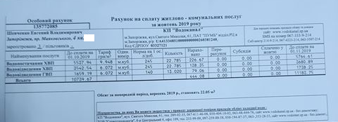 shevchenko-dolg1